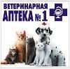 Ветеринарные аптеки в Кологриве